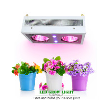 Advanced Diamond Series Zeus 230w Cob e LED UV crescem luzes